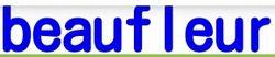 出会い系サイトbeaufleur:サイトロゴ
